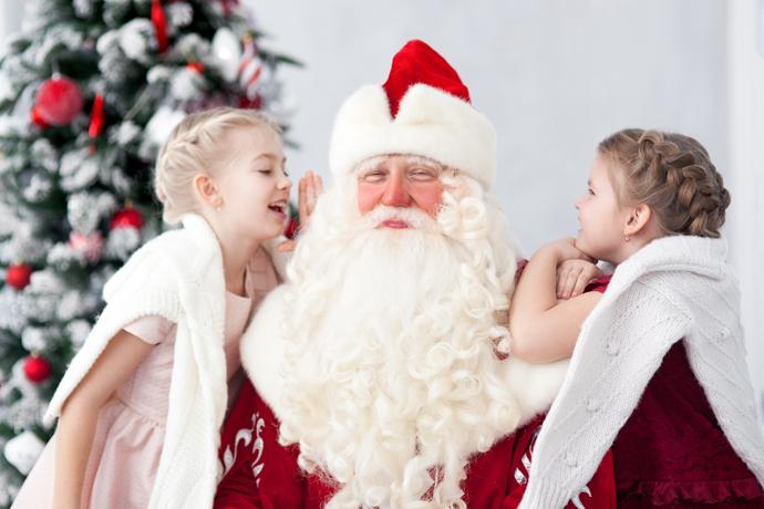 дед мороз на дом к детям